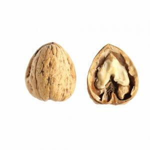 Καρύδια με κέλυφος