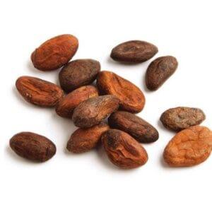 Σπόροι Κακάο (Cacao beans)